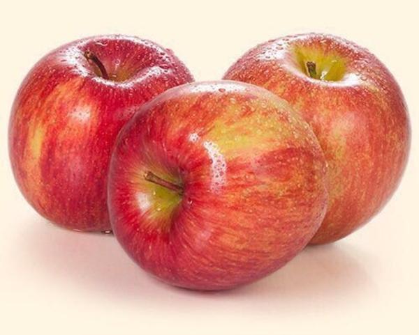 Саженцы плодовые 5